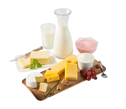 Milch & Molkereiprodukte