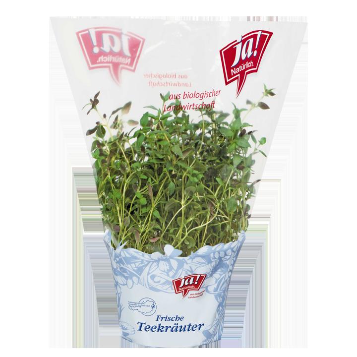 Bio-Teekräuter Zitronenthymian