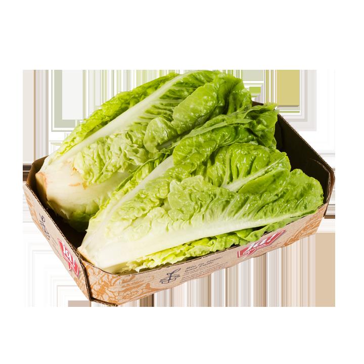 Bio-Salatherzen