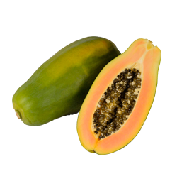 Bio-Papaya