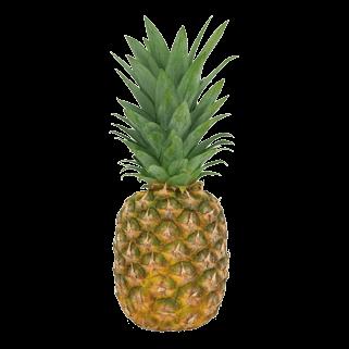 Bio-Ananas