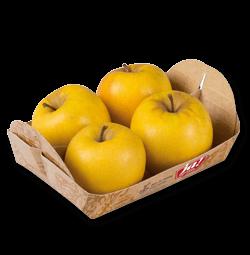 Bio-Äpfel Opal