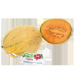 Bio-Zuckermelone