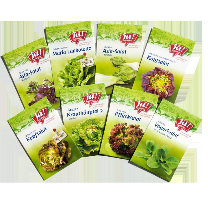 Bio-Salatsamen