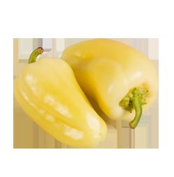 Bio-Paprika weiß