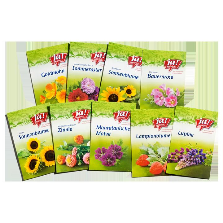 Bio-Blumensamen & Gründüngung