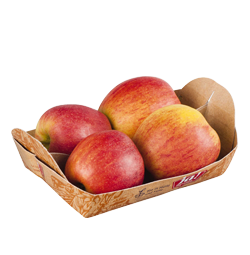 Äpfel rot Tasse