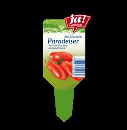 "Salattomate ""San Marzano""-Jungpflanzen"