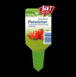 """Wildtomate """"Rote Ribisel""""-Jungpflanzen"""