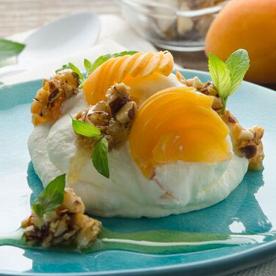 Geeiste Joghurtcreme mit Marillen und karamellisierten Paranüssen