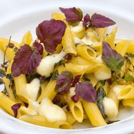 Überbackene Penne mit Perilla und Oliven