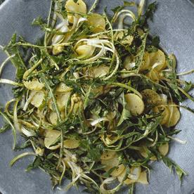 Löwenzahn-Erdäpfel-Salat