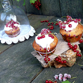 Ribisel-Cupcakes mit Frischkäse-Joghrt-Topping
