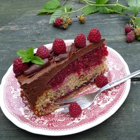 Mousse au Chocolat-Torte mit Himbeeren